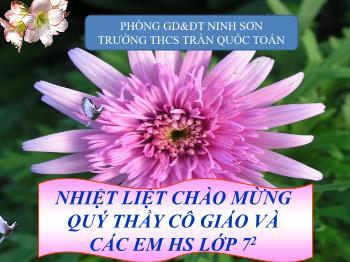 Bài giảng Ngữ văn 7 - Tiết 26: Quan hệ từ - Cô Cúc (THCS Trần Quốc Toản)