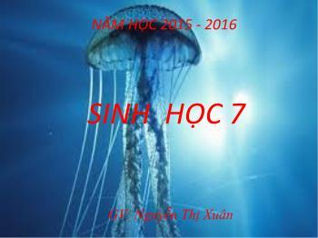 Bài giảng Sinh học 7 - Bài 8: Thủy Tức - Năm học 2015-2016 - Nguyễn Thị Xuân